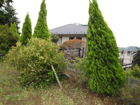 201109_taifuu01.jpg